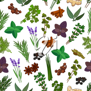 Herbs and spices seamless pattern. Vector patterns of mint, cinnamon, thyme, ginger, ginger, cloves, marjoram, tarragon, lemongrass, sage, basil, lemon balm, oregano, parsley, dill, cilantro, coriande
