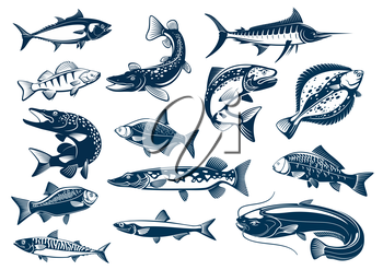 Fish vector isolated icons of tuna, pike and marlin or perch, bream, salmon and flounder or crucian, carp and mackerel sprat, sheatfish or catfish. Fishes spcies blue symbols set for seafood restauran