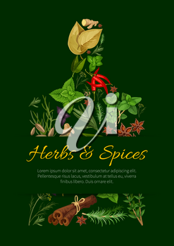 Cutting board silhouette with herbs and spices. Rosemary, mint, chilli pepper, oregano, cinnamon, basil, dill, thyme, vanilla, ginger, bay, anise, sage, cumin, marjoram leaf and seed for food design