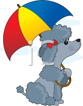 Royalty Free Clipart Image of a Poodle With an Umbrella