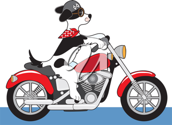 A dog is riding a red motorcycle. His ears, scarf and tail are flying in the wind and his helmut has bone decals.
