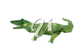 Illustration of modern flat design with origami crocodile, isolated on white background