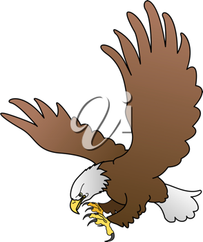 Royalty Free Clipart Image of a Bald Eagle