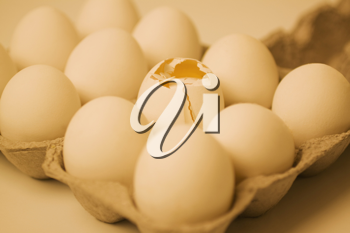 Broken egg in a carton with other eggs