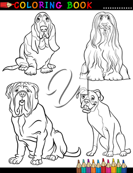 Coloring Book Black and White Cartoon Illustration of Cute Purebred Dogs