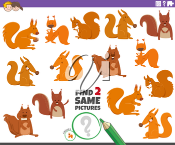Cartoon Illustration of Finding Two Same Pictures Educational Task for Children with Funny Squirrels Wild Animal Characters