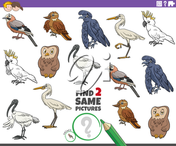 Cartoon illustration of finding two same pictures educational game with comic birds animal characters