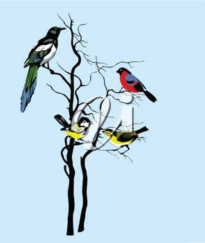 Royalty Free Clipart Image of Birds in a Tree