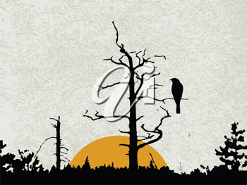 Royalty Free Clipart Image of a Bird in a Tree