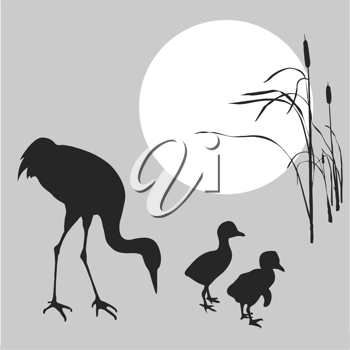 Royalty Free Clipart Image of Cranes