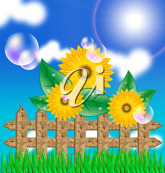 Royalty Free Clipart Image of Sunflowers and a Wooden Fence