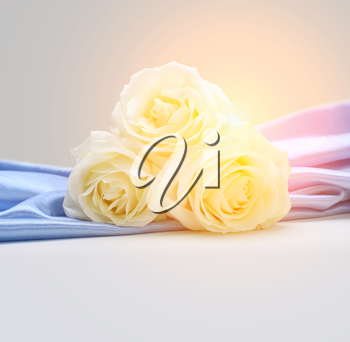 roses on silk background