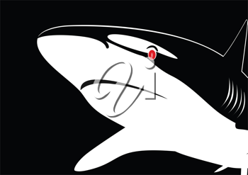 Royalty Free Clipart Image of a Shark
