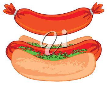 Quick meal hot dog on white background is insulated