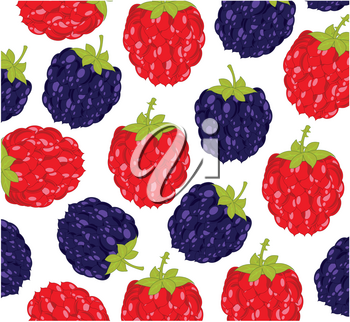 Vector illustration of the berry of the raspberry and blackberry decorative pattern