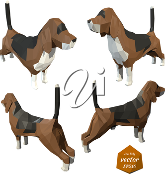 Set the dogs on a white background. Low poly style. Vector illustration.