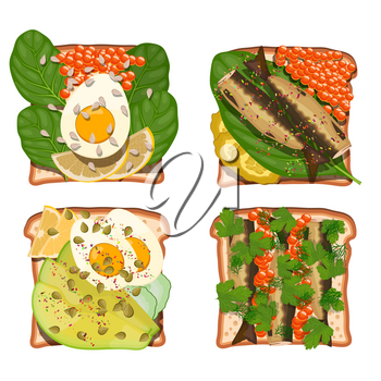 Set of toasts with various wholesome food products: egg, avocado, caviar, sprat, spinach, caviar, cucumber, lemon, dill.  Healthy food on white bread. Vector illustration of sandwiches