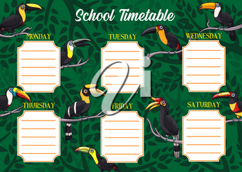 School timetable or schedule, education vector template with exotic toucan birds. Student planner or weekly lesson chart layout on background with tropical toucans, toucanets and jungle palm trees