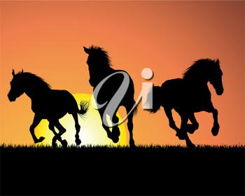 Royalty Free Clipart Image of Horses at Sunset