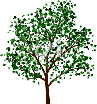 Summer tree with green leaves. EPS 10 vector illustration.