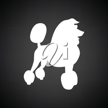 Poodle icon. Black background with white. Vector illustration.