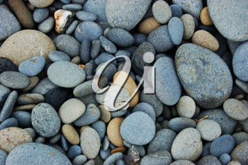Royalty Free Photo of a Collection of Rocks