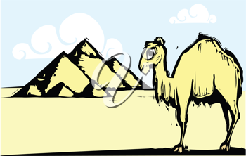 Royalty Free Clipart Image of a Camel by the Pyramids