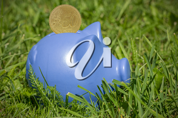 Blue piggy bank with coin on the green grass