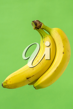 Bunch of fresh bananas isolated on green background