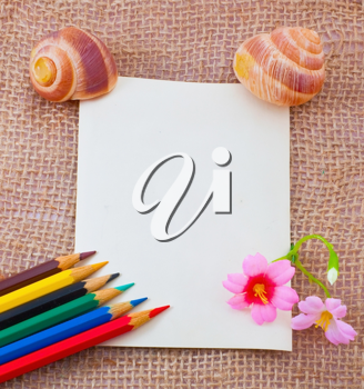 Empty letter on the sack surface with colorful pencils, flowers and cockleshells