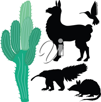 set of illustrations of animals of South America