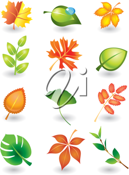 Royalty Free Clipart Image of a Set of Autumn Leafs