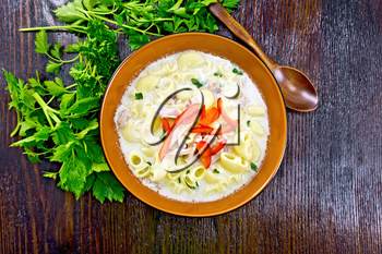 Soup from chicken meat, pasta with cream and sweet pepper, parsley and cilantro in a clay plate on the background of a dark wooden board on top
