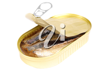 Royalty Free Photo of a Can of Sardines