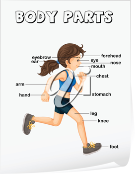 Illustration of girl running with parts labelled