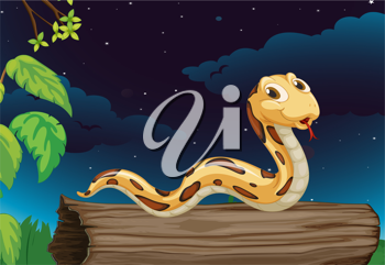 Illustraiton of snake on a log at night