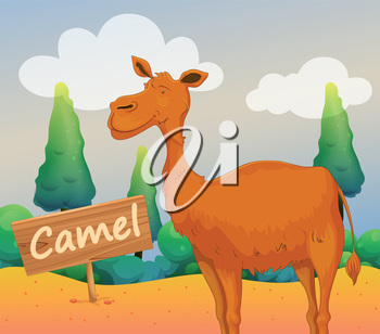 Illustration of a camel with a wooden signboard