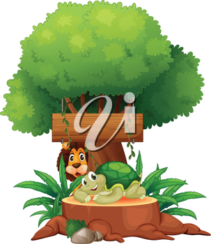 Illustration of a turtle and a lion under the tree with a wooden signboard on a white background