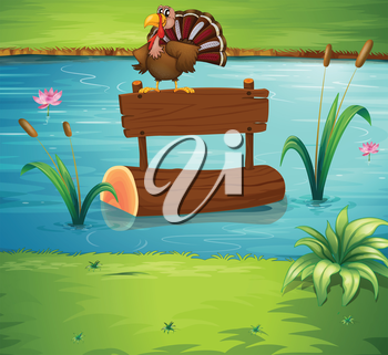 Illustration of a turkey above a floating trunk at the river