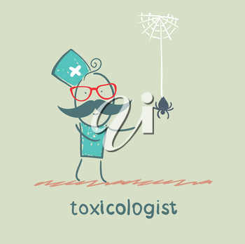 toxicologist look at the spider