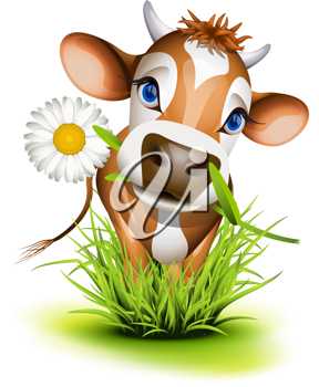 Royalty Free Clipart Image of a Jersey Cow