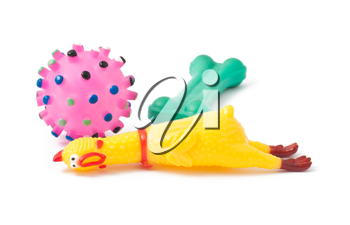 Royalty Free Photo of Three Dog Toys