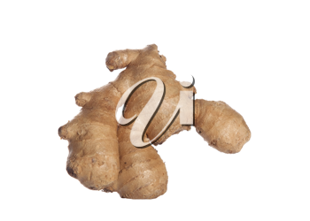 Royalty Free Photo of Ginger Root