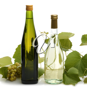 Royalty Free Photo of Bottles of Wine and Grapes