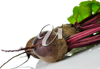 fresh beet roots with leaves on white background