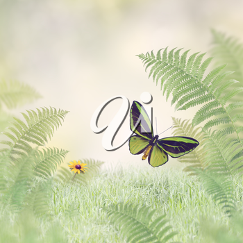 Green Butterfly and Plants.Nature Background