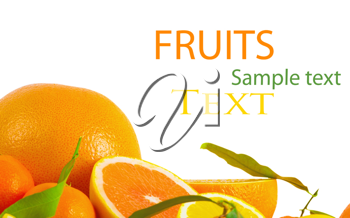 Royalty Free Photo of a Citrus Fruit Background