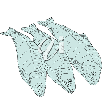 collection of natural marine fish sketch on white background.