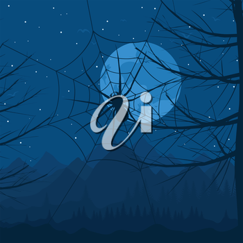 Spider on a web against the night sky. A vector illustration