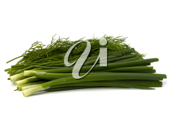 dill and young onion isolated on white background
